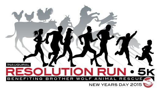 ResolutionRunLogo2