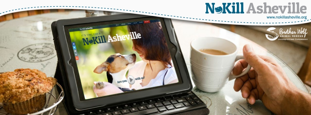 2015-No-Kill-Asheville-Facebook-Cover