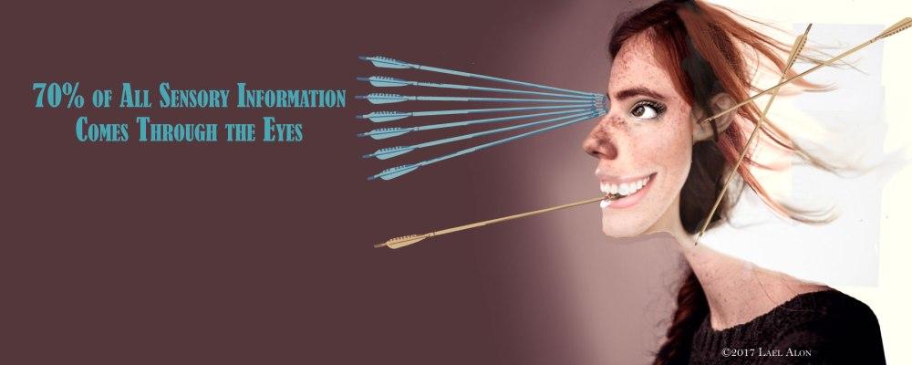 Sensory-Information-Slide